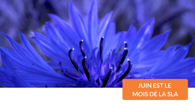 """fleur mauve, """"juin est le mois de la sla"""""""